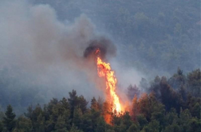Νέα φωτιά στη Ράχη Αχαΐας