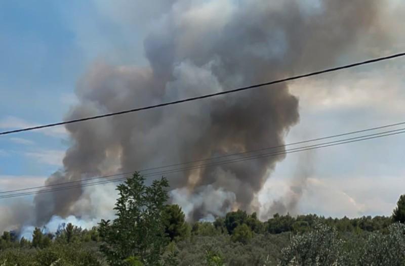 Μαίνεται σε δύο μέτωπα η φωτιά στο Θεολόγο Φθιώτιδας - Έκλεισε δρόμους η Πυροσβεστική