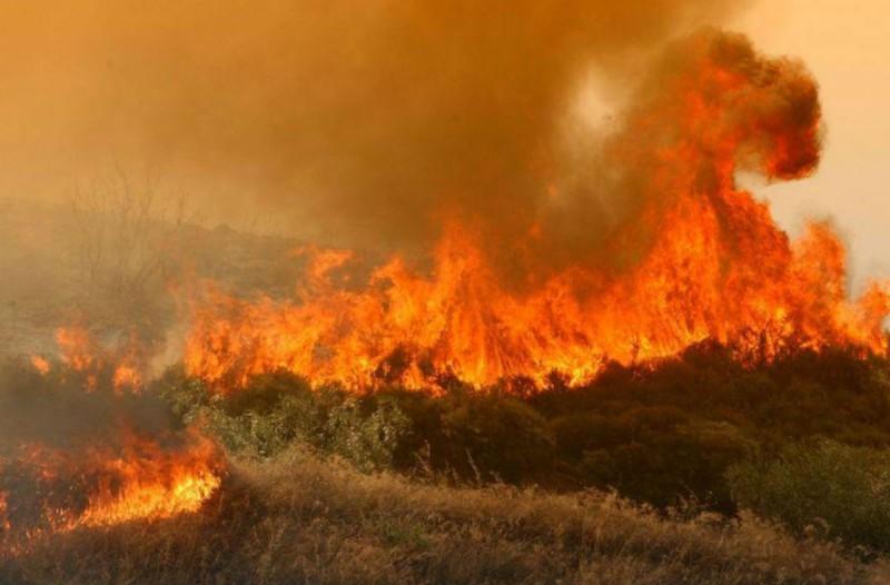 Συναγερμός στη Βόνιτσα: Πυρκαγιά σε δασική έκταση στον Τρύφο Αιτωλοακαρνανίας
