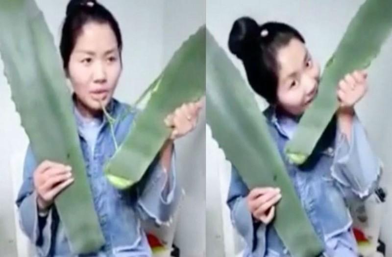Έφαγε σε live μετάδοση ένα φυτό που νόμιζε πως ήταν αλόη - Αυτό που ακολούθησε θα σας κάνει να