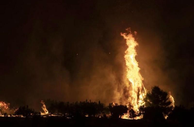 Φωτιά στις Κεχριές: Θρίλερ στο Σοφικό - Σε κατάσταση έκτακτης ανάγκης η αν. Κορινθία