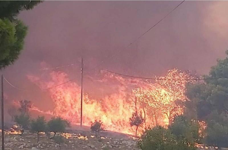 Μεγάλη φωτιά στον Κάνδανο Χανίων: Κάηκαν σπίτια και εκκενώθηκαν οικισμοί - Κινδυνεύει το Κεδρόδασος