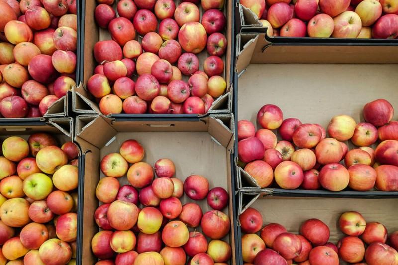 δίαιτα μήλα