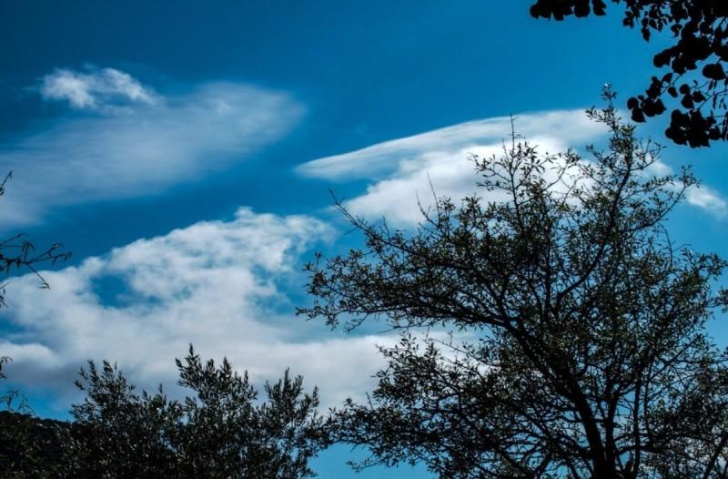 Καιρός: Καλοκαιρινές συνθήκες την Τρίτη (11/8) - Πού θα βρέξει