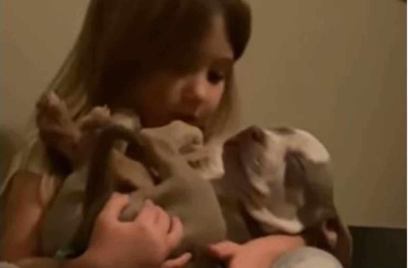 Κάμερα καταγράφει ένα κουτάβι να κάθεται στην αγκαλιά του κοριτσιού - Αυτό που έγινε λίγο μετά συγκλονίζει