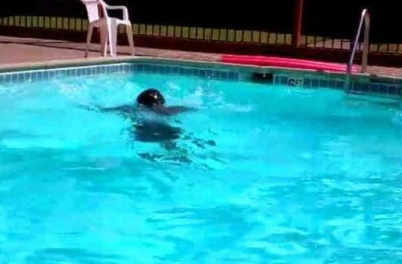 Τραγωδία στη Ρόδο: Πνίγηκε 50χρονος σε πισίνα