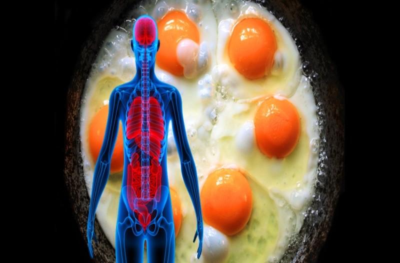 Αυτό θα συμβεί στο σώμα αν φάτε τρία αυγά την ημέρα - Δεν πάει το μυαλό σας