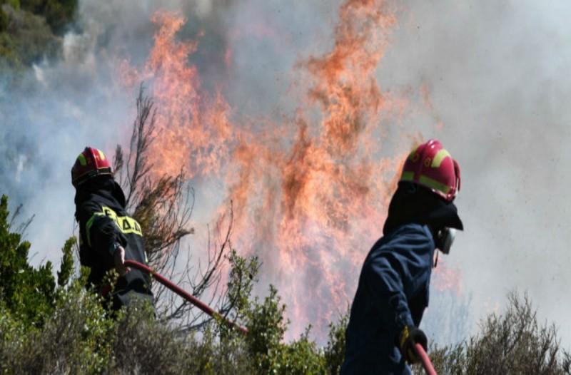 Μάχη με τις φλόγες: Φωτιές σε Ηλεία, Μεσσηνία και Άνδρο