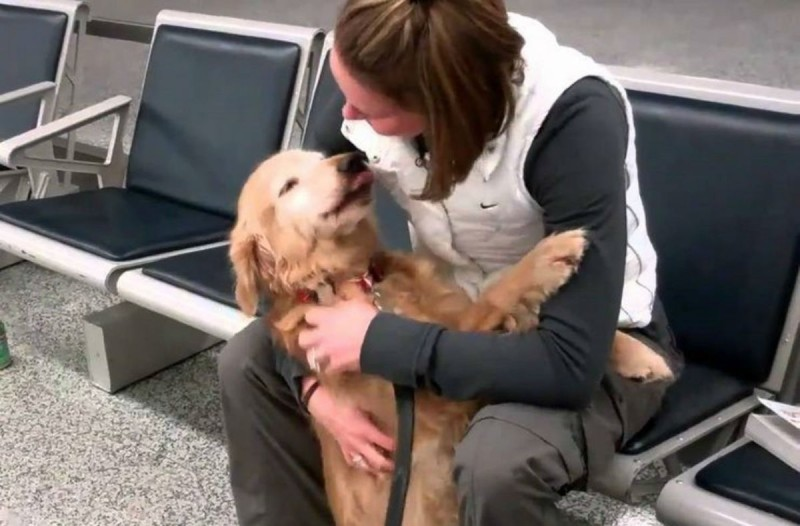 Αυτή η σκυλίτσα δεν μπορεί να σταματήσει να κλαίει από χαρά - Ο λόγος θα σας κάνει κι εσάς να δακρύσετε