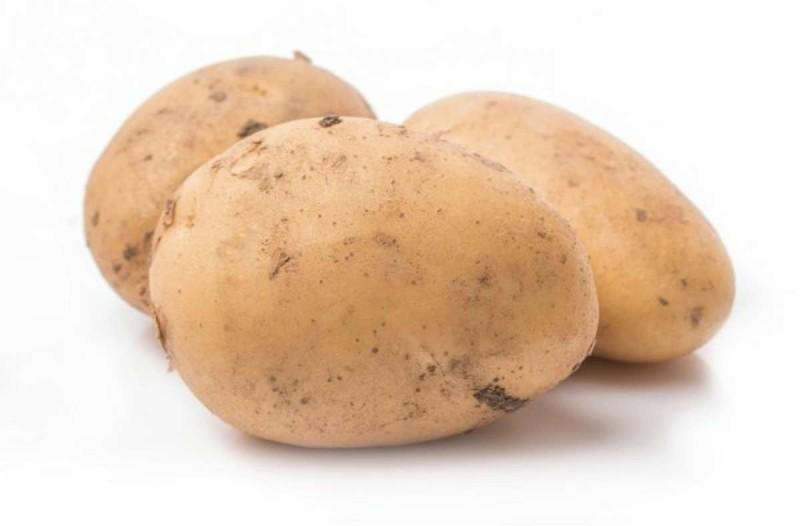 Θέλει να φυτέψει πατάτες στον κήπο, αλλά είναι μόνος και αδύναμος - Το ανέκδοτο της ημέρας 14/10