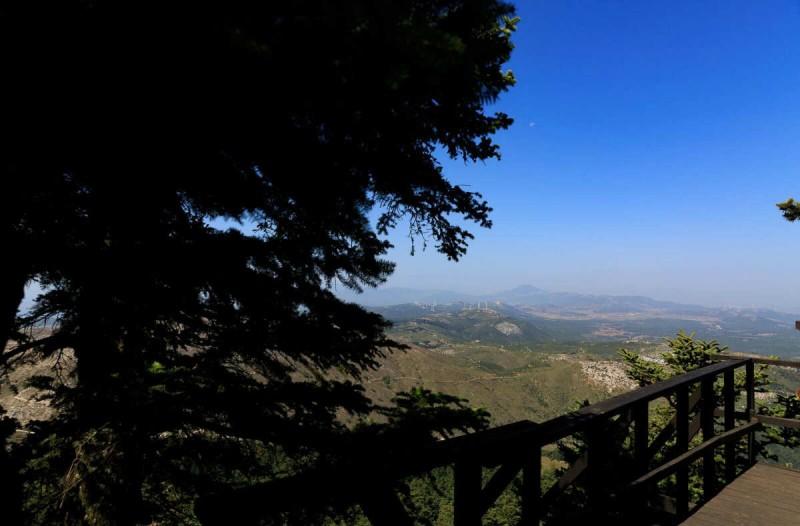 Η φωτογραφία της ημέρας: Βόλτα στην καταπράσινη Πάρνηθα