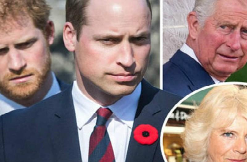 Η εκδίκηση των παιδιών της πριγκίπισσας Νταϊάνα: Ο Ουίλιαμ και ο Χάρι εμπόδισαν την...