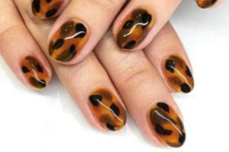 Turtoise νύχια