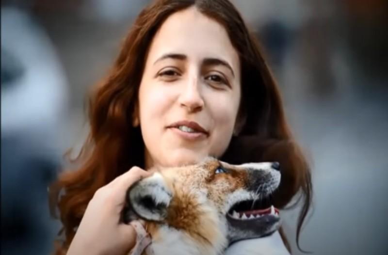 Η αλεπού που μεγάλωσε με ανθρώπους και νομίζει ότι... (video)