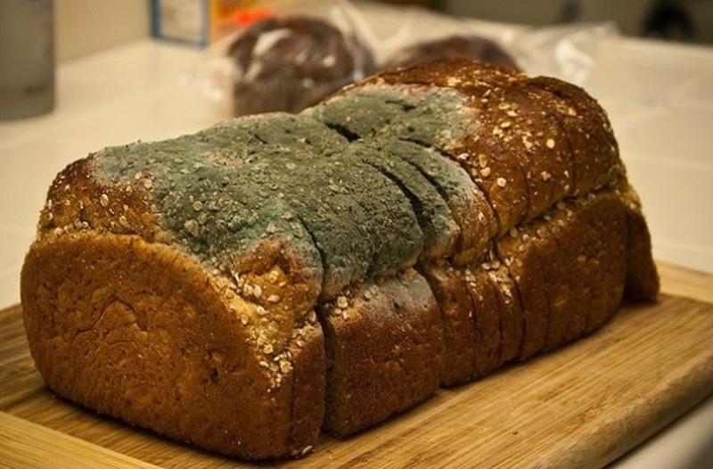 Προσοχή: Τι θα συμβεί στον οργανισμό σας αν φάτε ψωμί που έχει μουχλιάσει!