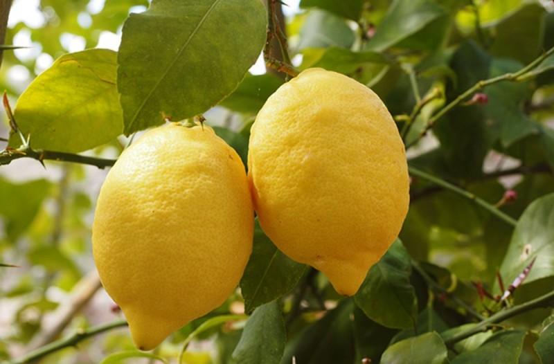 Τι θα συμβεί αν βάλετε λεμόνι σε μαγειρική σόδα