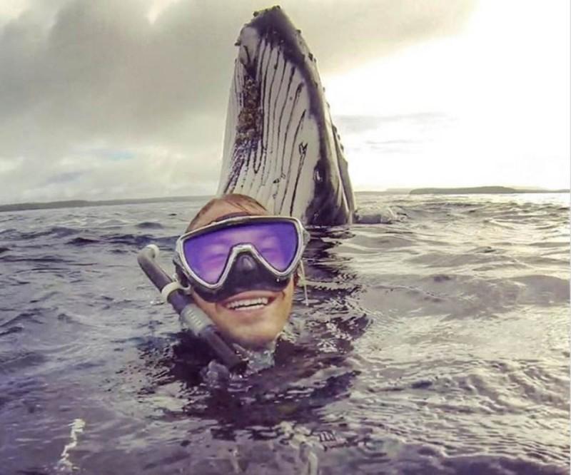 Δύτης έβγαλε selfie στην επιφάνεια του νερού και έπαθε σοκ με αυτό που είδε από πίσω του