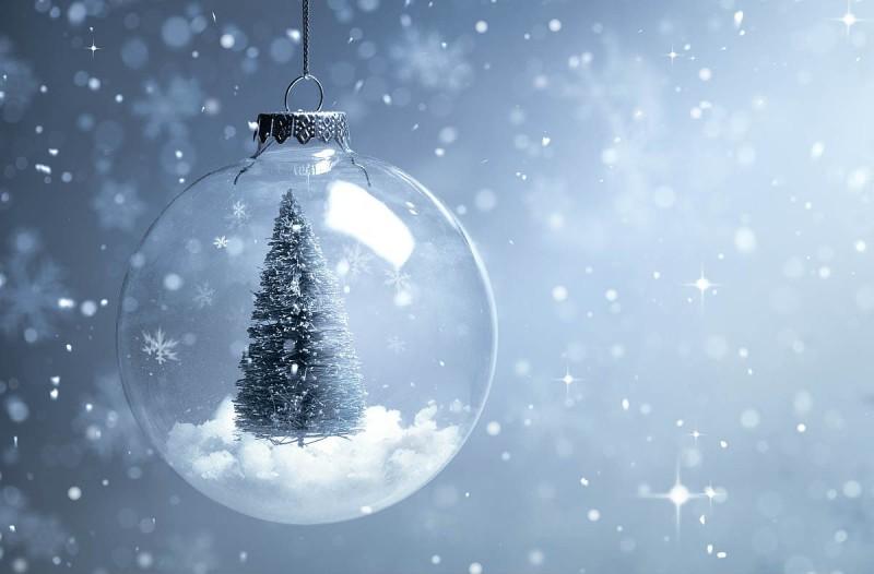 Η φωτογραφία της ημέρας: Καλά Χριστούγεννα σε όλους! Με υγεία!