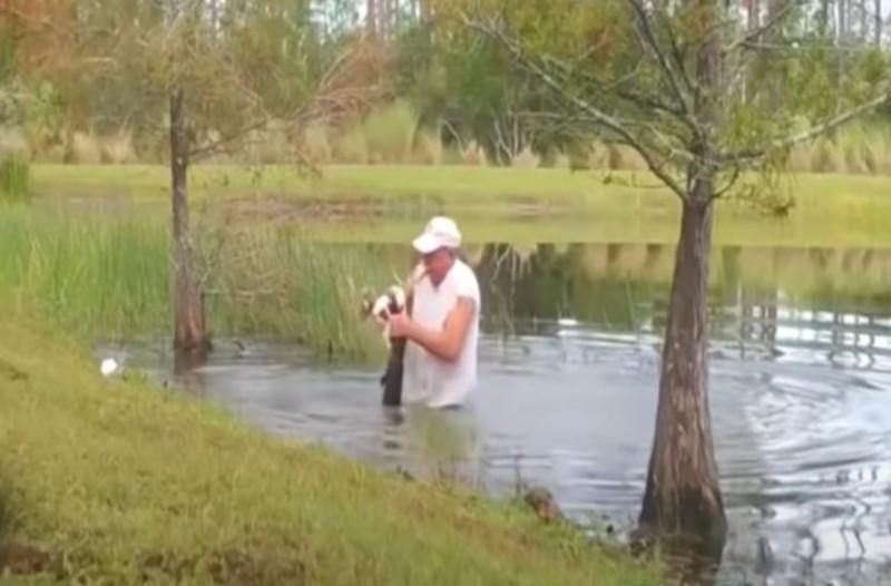 Σκύλος βρέθηκε αντιμέτωπος με έναν αλιγάτορα αλλά αυτό που συνέβη στη συνέχεια θα σας συγκλονίσει (video)