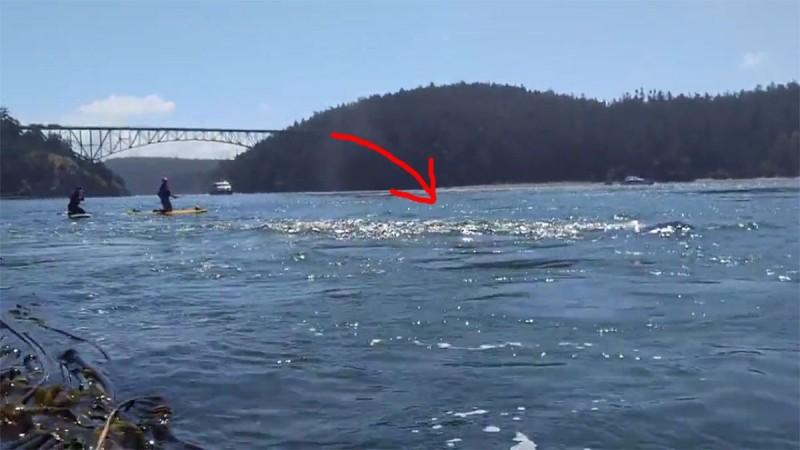 Όταν είδε την θάλασσα να αφρίζει άρπαξε αμέσως την κάμερα. Αυτό που κατέγραψε θα σας αφήσει με το στόμα ανοιχτό!