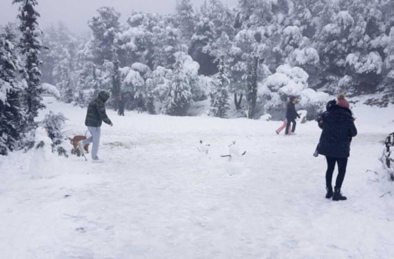 Η φωτογραφία της ημέρας: Λίγος... χιονοπόλεμος στην Αττική