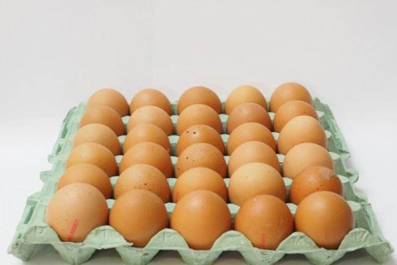 Τα οφέλη του αυγού στην υγεία μας