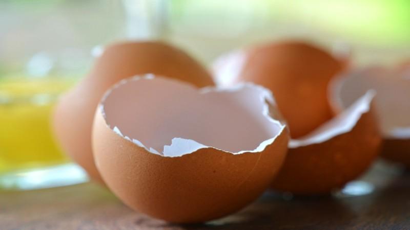 Εξαφανίστε την τερηδόνα των δοντιών με τσόφλια αυγών