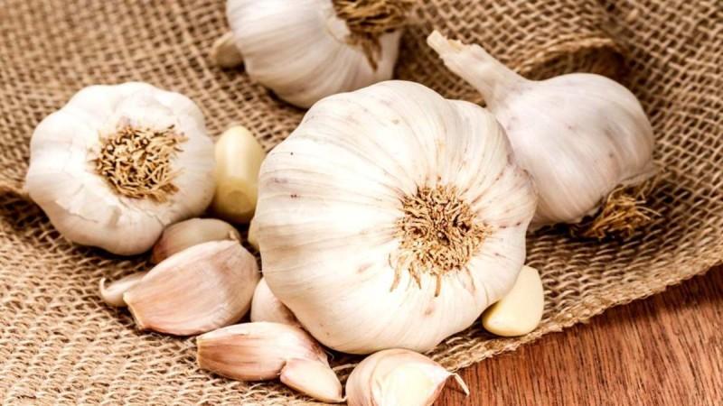 Σκόρδο: Θεραπευτικές ιδιότητες