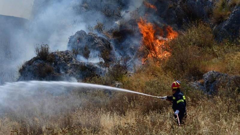 Συναγερμός στη Μεσσηνία: Φωτιά ξέσπασε σε δασική έκταση