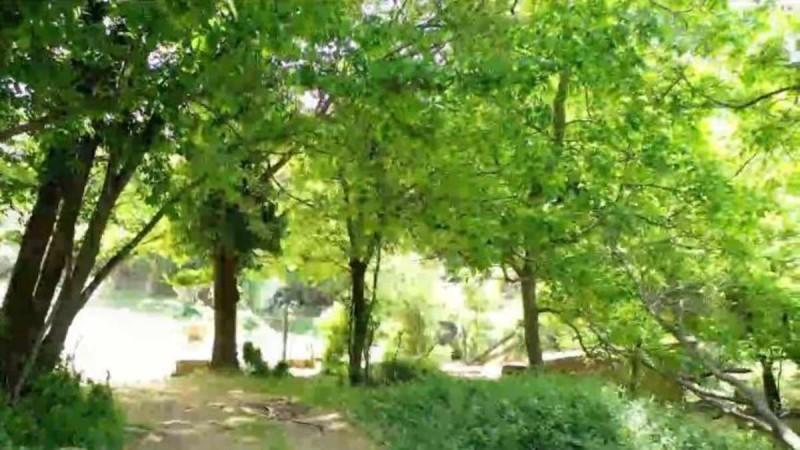 Τραγωδία: Νεκρός ο 45χρονος που αγνοείτο στην Πάρνηθα