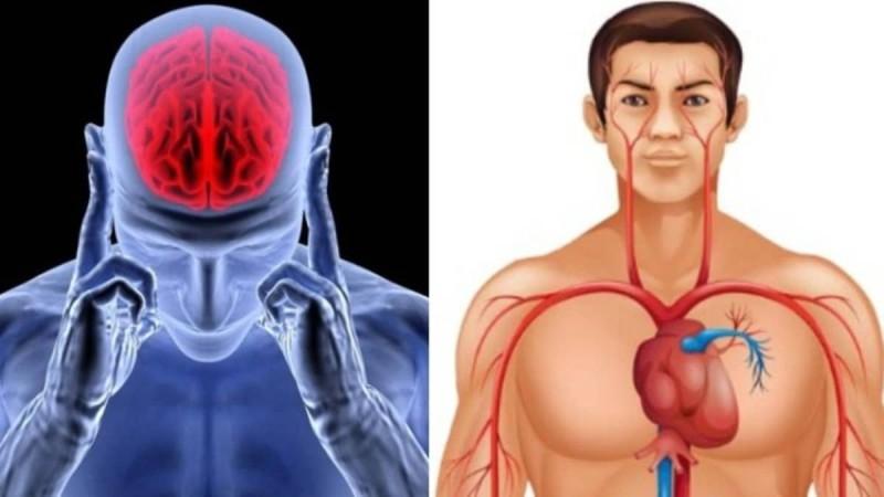 Η «θαυματουργή» τροφή που μπορεί να καίει αλλά μας προστατεύει από έμφραγμα και εγκεφαλικό