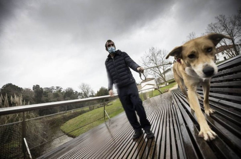 Άστεγος άντρας αρνείται να αφήσει το σκύλο του για ένα σπίτι