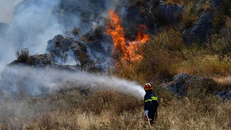 Συναγερμός στην Ηλεία: Φωτιά σε δασική έκταση