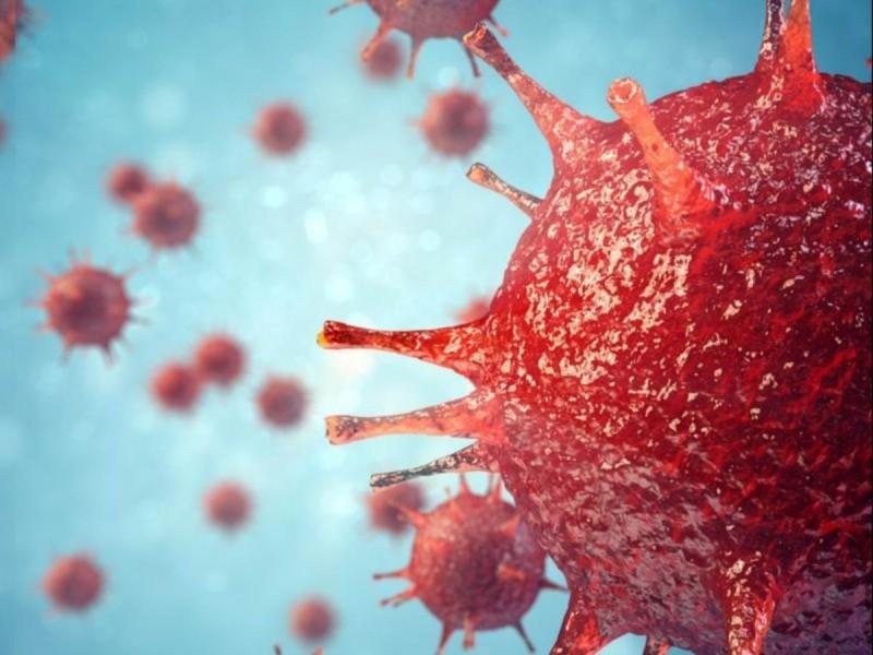 Τα στοιχεία που αποκαλύπτουν πώς δεν θα είχε εξαπλωθεί ο ιός