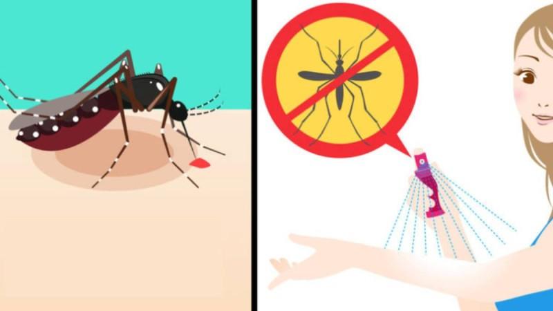 Τέλος τα κουνούπια: Συνταγή για να ησυχάσετε μια για πάντα