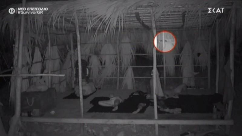 Survivor 4: Κλάμα στην παραλία - Βατράχι... κατούρησε τον Ασημακόπουλο