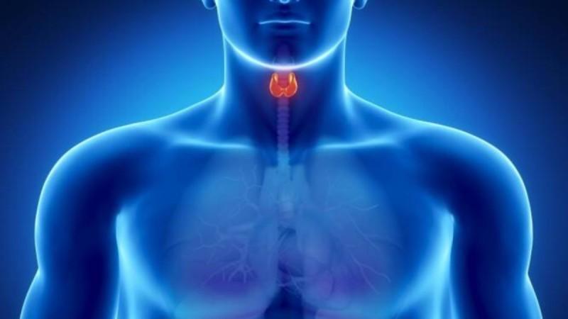 Θυρεοειδής: Oι καρκινικοί μικροί όγκοι δεν είναι πάντοτε αθώοι