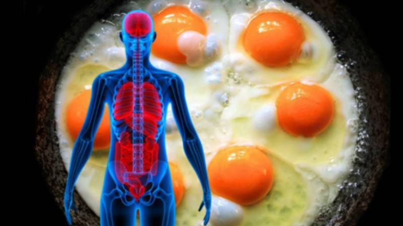 Τι θα συμβεί στον οργανισμό μας αν τρώμε 3 αυγά μέσα σε μια μέρα!