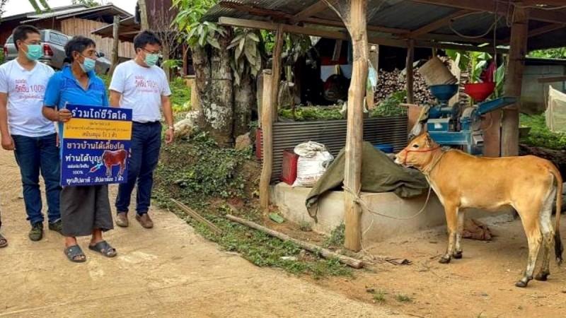 Έπος: Αγελάδες, κότες, μέχρι και διαμερίσματα κερδίζουν όσοι εμβολιάζονται από την Ταϊλάνδη έως το Χονγκ Κονγκ!