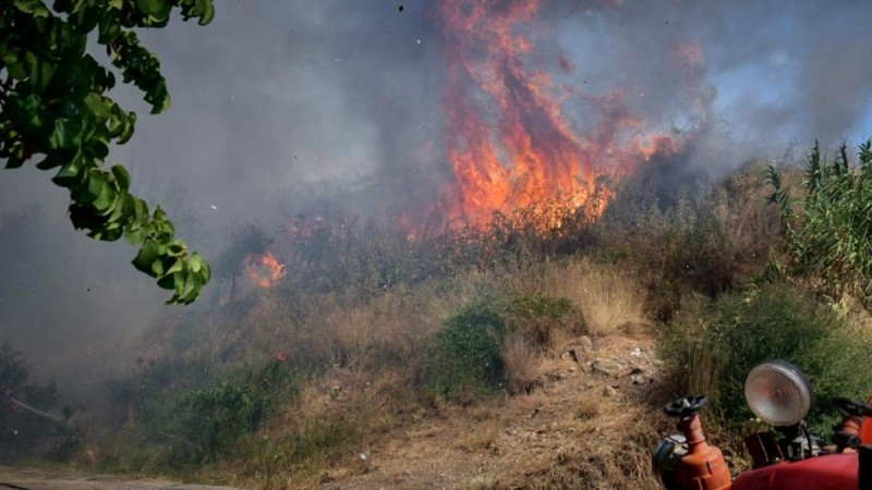 Βόνιτσα: Μάχη με τις φλόγες δίνει η Πυροσβεστική - Εκκενώθηκε ο οικισμός Δρυμός