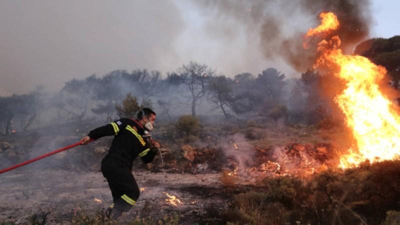 Μεγάλη φωτιά στο Καλέντζι Κορινθίας