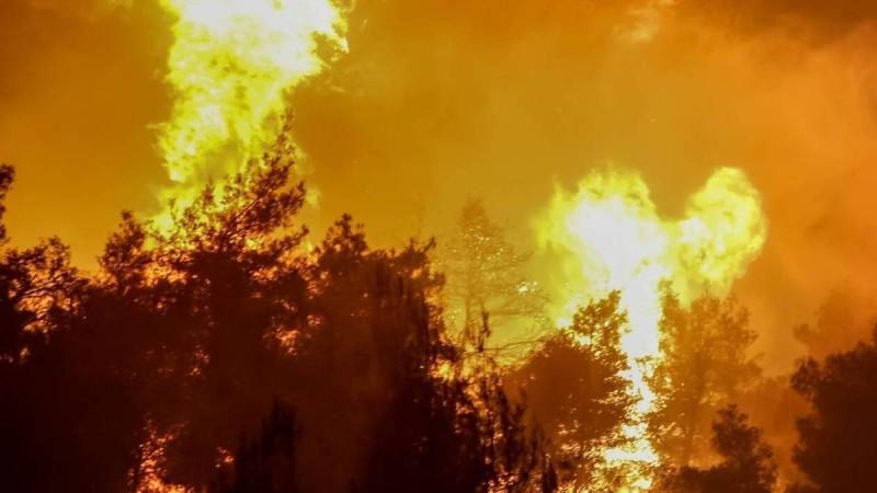 Φωτιά στην Κορινθία: Συνεχίζεται η μάχη με τις φλόγες - Σύλληψη άνδρα για εμπρησμό