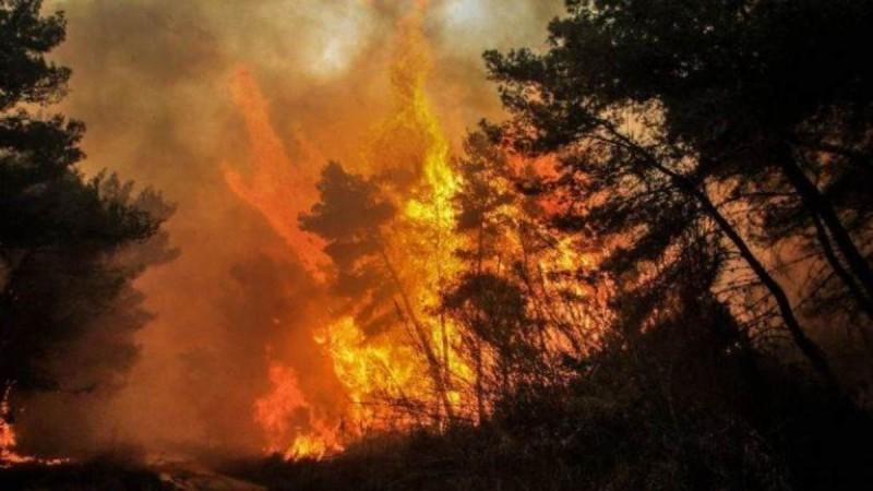 Συνεχίζεται το θρίλερ στην Τουρκία: Στους έξι οι νεκροί από τις δασικές πυρκαγιές