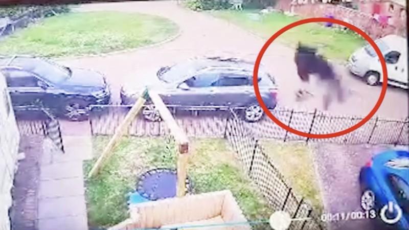 31χρονη μητέρα κατέγραψε με την κάμερά της μια μαύρη φιγούρα στην αυλή της - Κάλεσε ιερέα για να την ξορκίσει (Video)