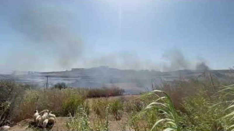 Μύκονος: Στις φλόγες τυλίχθηκε αυλή βίλας (Video)