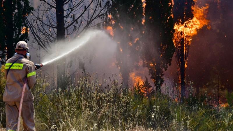 Πύρινη κόλαση στην Πάτρα: Καίγονται σπίτια και εκκενώνονται οικισμοί - Λιποθύμησε πυροσβέστης! Χτυπούν οι καμπάνες (Video)