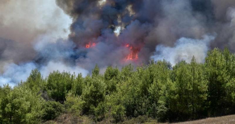 Ισχυρή φωτιά στον Πύργο (Video)