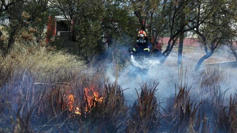 Φωτιά στο Αίγιο - Κάηκαν περίπου 70 στρέμματα δασικής έκτασης στη Ρόδο