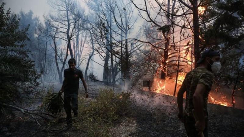 Δωρεάν 24ωρη ψυχολογική υποστήριξη στους πληγέντες των πυρκαγιών