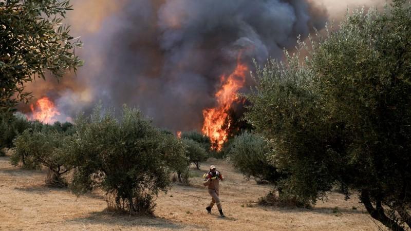 Νέα φωτιά τώρα στην Ηλεία: Πύρινο μέτωπο και στη Ζαχάρω